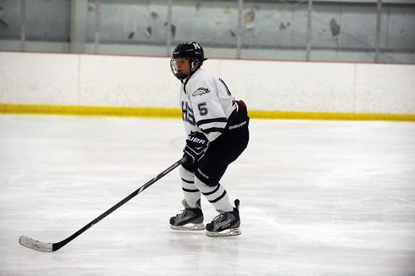 Medway High School Hockey 2013 - 2014